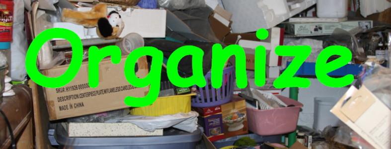 My new years word-organize
